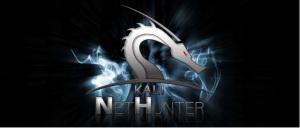 Kali Linux nethunter hacking tool download